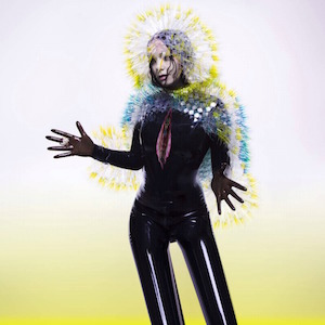 Björk – Lionsong の歌詞を和訳してみた