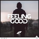Avicii – Feeling Good 歌詞を和訳してみた