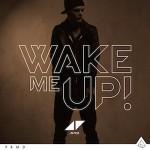 Avicii – Wake Me Up 歌詞を和訳してみた