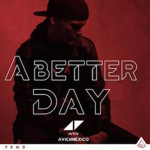 avicii-for-a-better-day