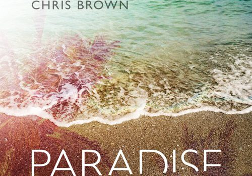 Benny Benassi & Chris Brown – Paradise 歌詞を和訳してみた