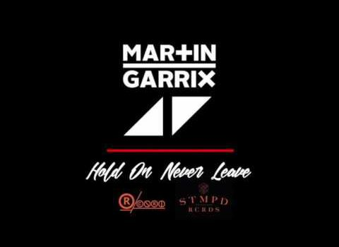 Avicii – Hold On Never Leave ft. Martin Garrix 歌詞を和訳してみた