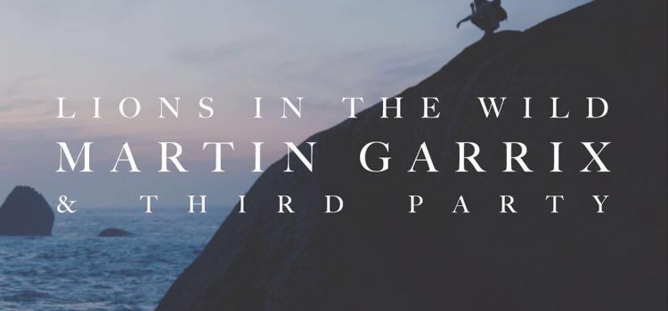 Martin Garrix – Lions In The Wild 歌詞を和訳してみた