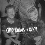 歌詞和訳!Otto Knows ft. Avicii – Back Where I Belong