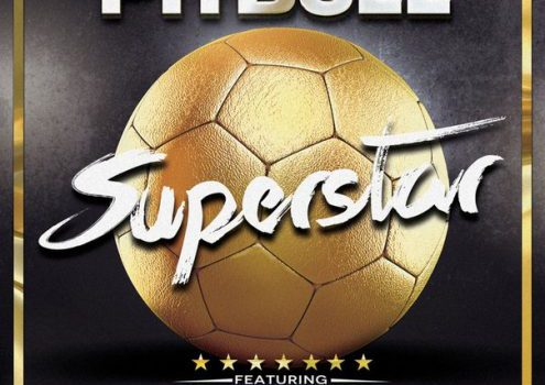 Pitbull – Superstar ft. Becky G 歌詞を和訳してみた