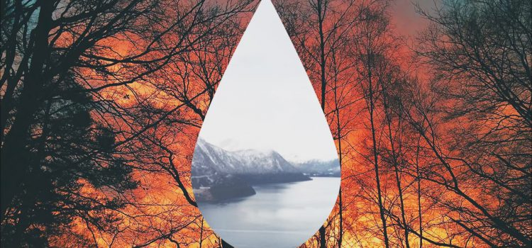 Clean Bandit – Tears ft. Louisa Johnson 歌詞を和訳してみた