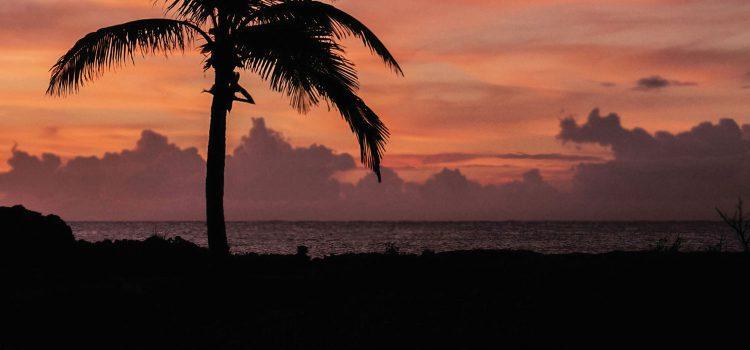 Tiesto – Summer Nights ft John Legend 歌詞を和訳してみた