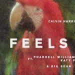 歌詞和訳 Calvin Harris – Feels ft Pharrell Williams