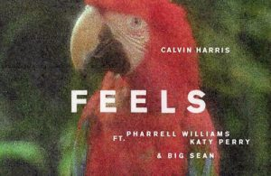 calvin-harris-feels