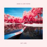Zedd, Liam Payne – Get Low (Infrared) 歌詞を和訳してみた