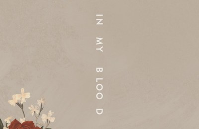 Shawn Mendes – In My Blood 歌詞を和訳してみた